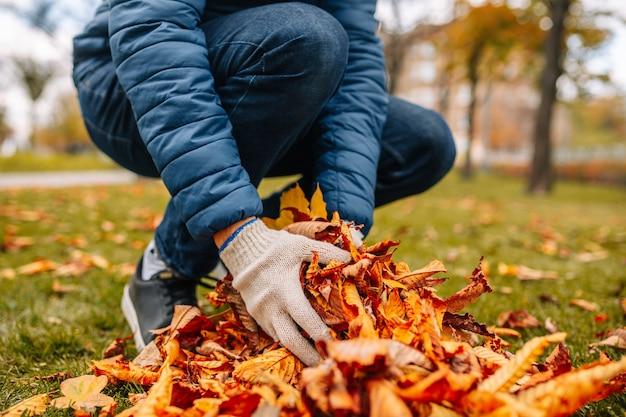 葉を山積みに集めている手袋をはめた男のクローズアップショット。秋の時期に葉を集める男。