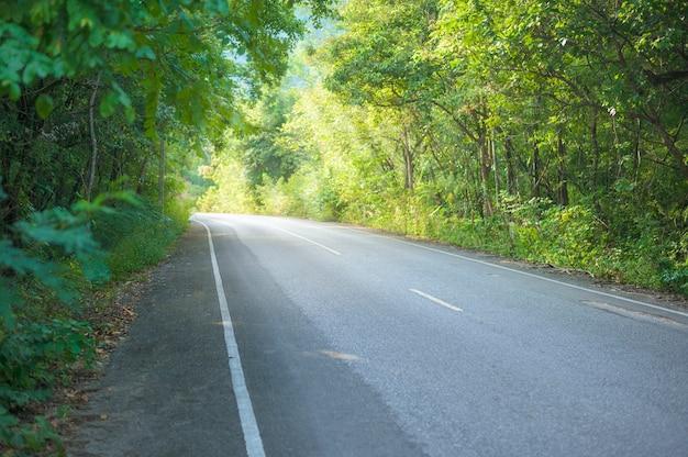 自然、休日、旅行の概念と一緒に田舎道