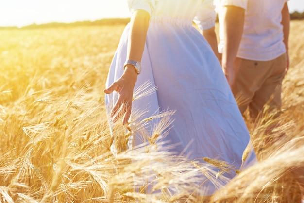 愛するカップルが麦畑を歩きます。小麦に触れている女の子の手のクローズアップ。