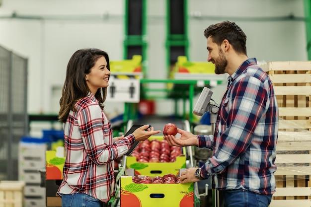 Пара в клетчатой одежде выбирает яблоко из ящиков на производственном складе и оценивает