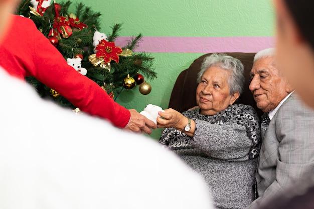 クリスマスツリーを飾るのを手伝っている老人のカップル