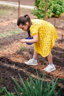 노란 드레스를 입은 귀여운 소녀가 채소 씨앗이나 꽃을 정원 침대 유기농 채소에 붓습니다...