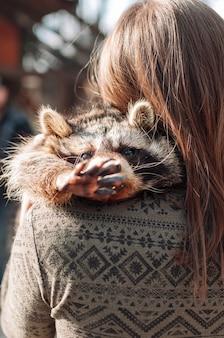 귀여운 너구리가 소녀의 어깨에 누워 카메라를 향해 발을 뻗습니다. 동물이 발을 흔듭니다. 푹신한 너구리 수컷. 동물원에서 길들여진 포유동물. 선택적 초점
