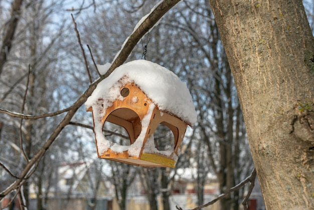 Милая деревянная кормушка для птиц висит на дереве в зимнем парке. помогаем птичьим друзьям в холодное время года. забота об окружающей среде.