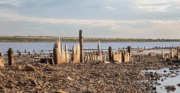 死んだ湖と古い塩の丸太が水からのぞきます