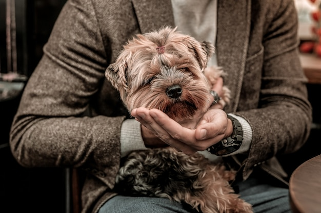 재미있는 주둥이를 가진 개. 개를 손에 들고있는 남자