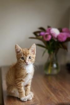 Домашняя кошка сидит на столе возле вазы с букетом и компьютером. фото высокого качества