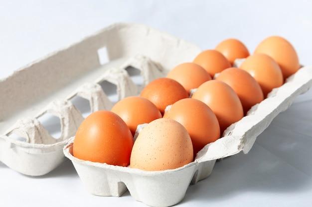 カートンに1ダースの茶色の卵