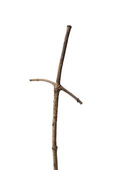 真っ白な背景に分離された、十字架に似た2つの枝を持つ乾いた枝。