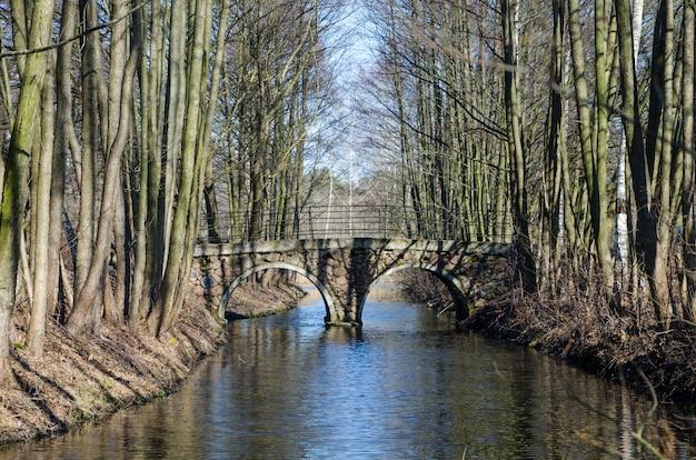 Сказочный мост через реку в лесу