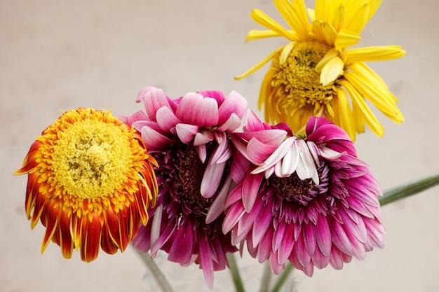 透明な花瓶に色とりどりのガーベラの色あせた花束