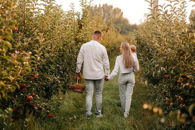 家族が果樹園を歩く