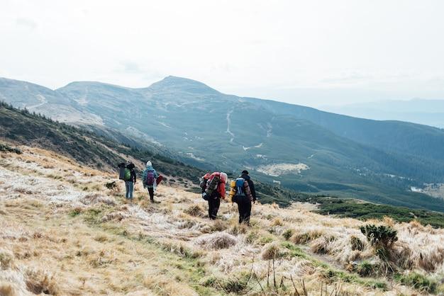 山の中の友達との素晴らしい旅行。