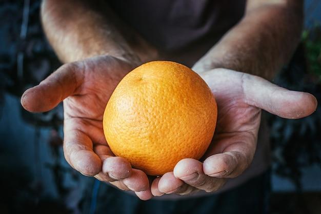 汚れた手でオレンジを持っている農夫。
