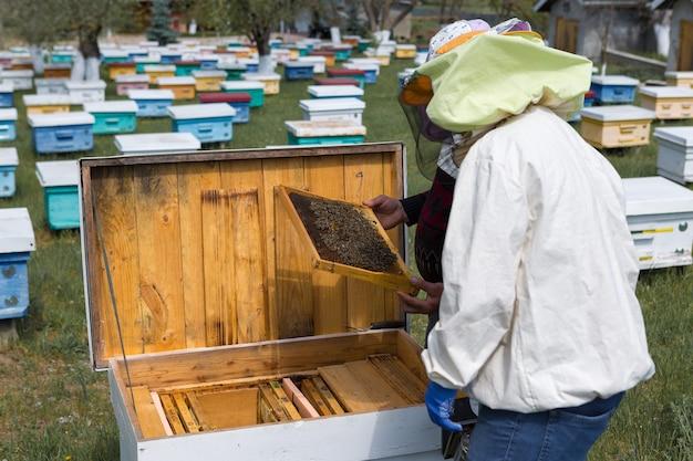 양봉장에 있는 농부가 밀랍 벌집이 있는 틀을 들고 있다