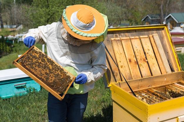 ミツバチの養蜂場の農家は、ワックスのハニカムでフレームを保持しています