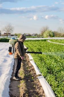 농부가 해충과 곰팡이에 대한 감자 농장 살포 재배 식물의 보호