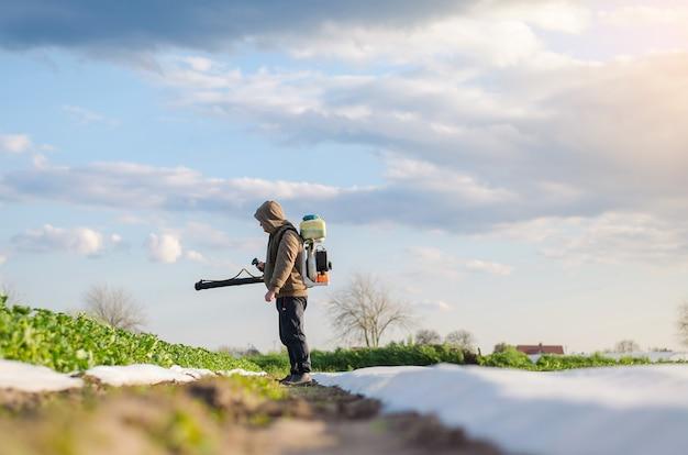 농부가 감자 농장 밭에 화학 물질을 뿌리고 있습니다. 화학 물질 사용 통제 식품 재배