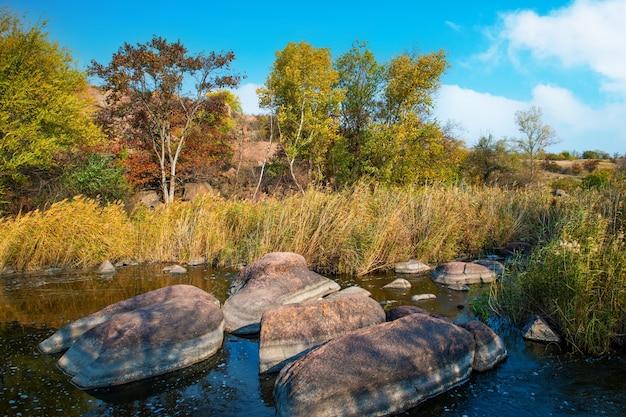 Быстрый чистый ручей бежит среди гладких влажных камней, окруженных высокими сухими глыбами.