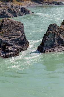 Быстрая широкая и полноводная горная река. из воды торчат большие камни. большая горная река катунь, бирюзового цвета, в горном алтае, республика алтай.