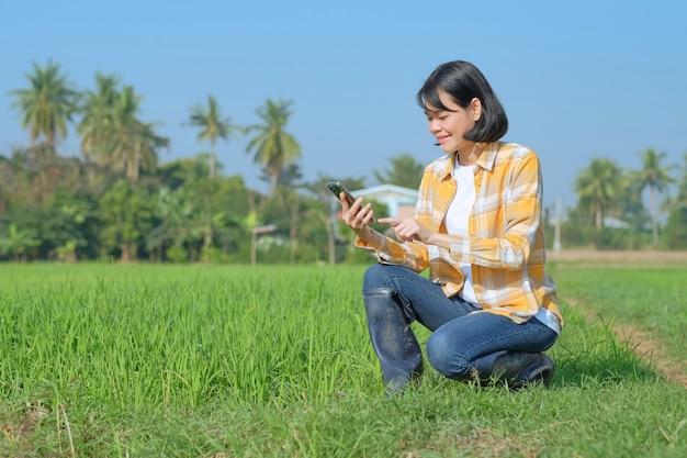 노란색 줄무늬 셔츠를 입은 아시아 여성 농부가 들판에 웃는 얼굴로 스마트폰을 사용하여 앉아 있습니다.