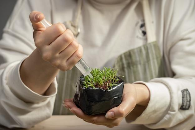 Женщина-биолог изучает растения