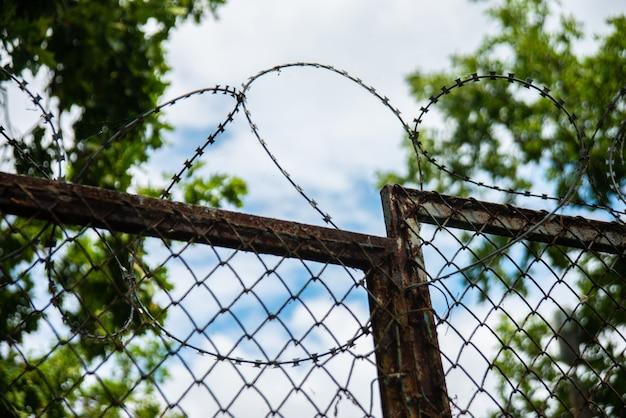 Забор с колючей проволокой на открытом воздухе на небо и дерево