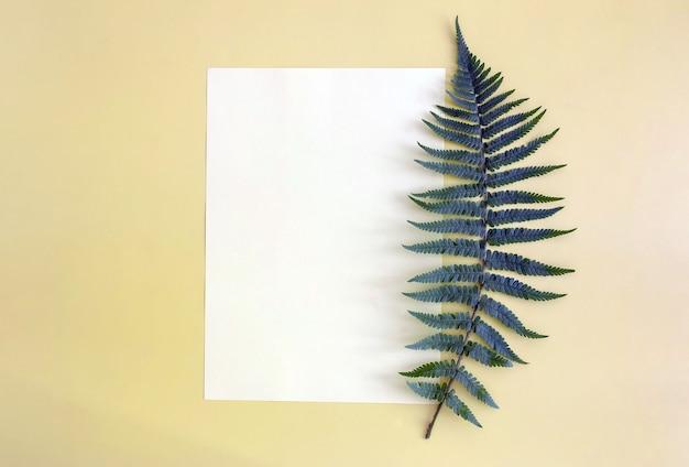Ветка папоротника и лист бумаги