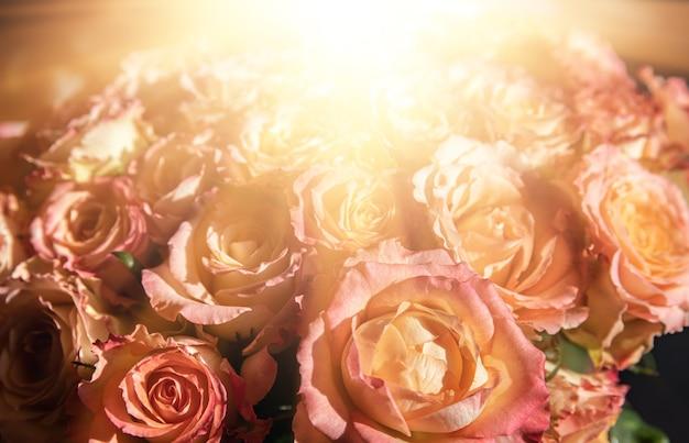 Праздничный букет из оранжевых роз в солнечном свете. цветочный фон