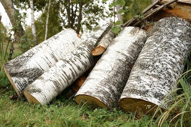 草の上にいくつかの白樺の製材された丸太 Premium写真