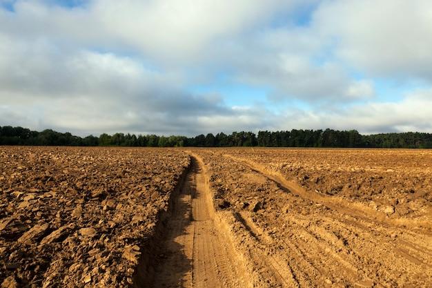 耕された土壌を走る車からのいくつかの深い轍、秋の季節、クローズアップ