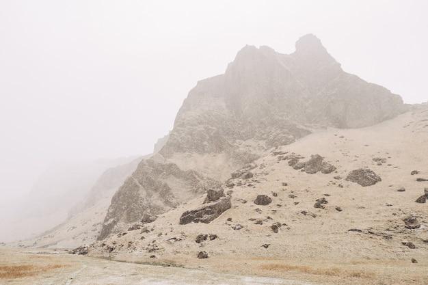 Поле сухой желтой травы на фоне заснеженных горных вершин в исландии