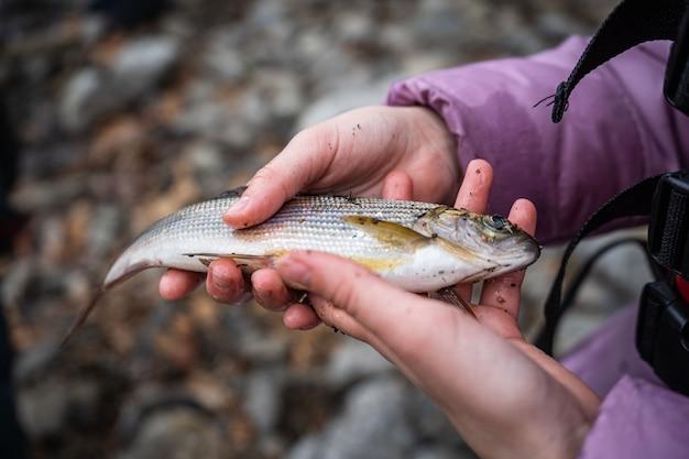 Рыбак держит в руке хариуса