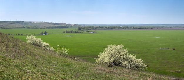 Цветущий кустарник на фоне долины реки дон в центральной части россии. панорамный вид сверху на весенний луг с травой и прудом.