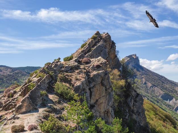 岩だらけの崖の上を飛ぶワシ。山の上の空を飛んでいるグリフォンハゲタカgypsfulvus。ダゲスタン。