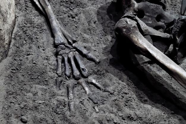 무덤에있는 인간 해골 조각