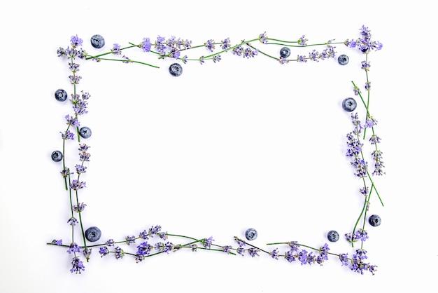 Рамка из свежих цветов лаванды и черники на белом фоне