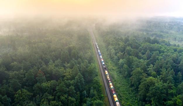 資源を積んだ貨物列車が森の中を貨物を運びます。素晴らしい夏の風景。ネタバレレールから夜明けにぼやけた松の木。