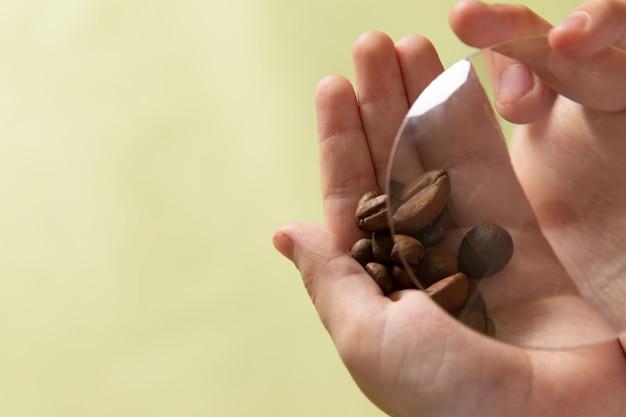 男の子の手で正面の茶色のコーヒー種子