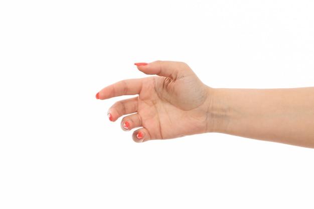 Вид спереди женская рука с цветными ногтями с поднятой рукой на белом