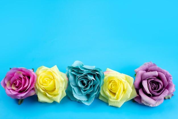 青、花色の植物にカラフルでエレガントな正面花の組成