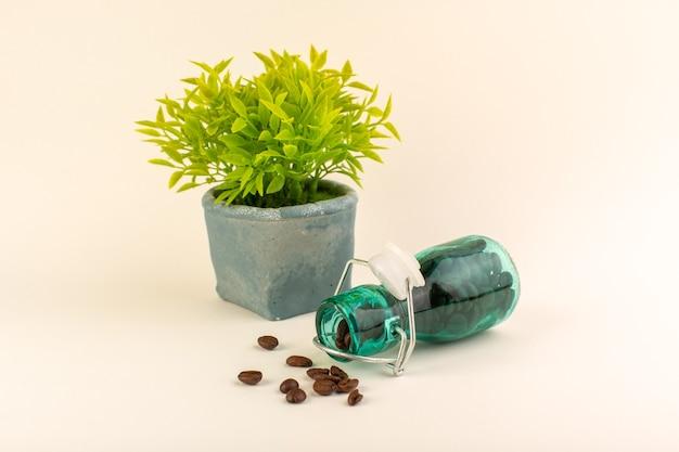 Банка вид спереди с кофе и зеленым растением на розовом столе семена цветов кофейного цвета
