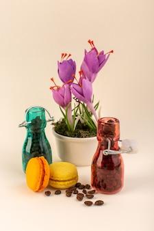 Фляга с кофе французскими макаронами и фиолетовым растением на розовой поверхности