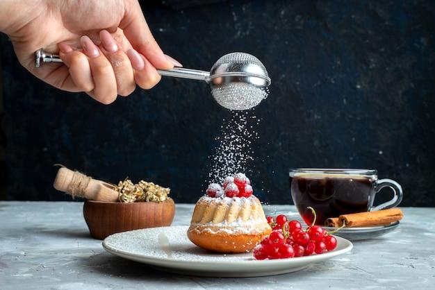 Маленький торт с красной клюквой на белой тарелке, вид спереди, на светлом настольном пироге появляется сахарная пудра