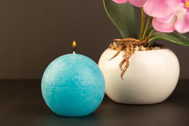 Вид спереди круглой формы свечи голубого цвета, разработанной вместе с горшком с цветком на темном фоне яркого огненного украшения