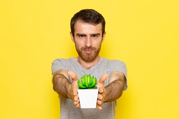 Молодой мужчина в серой футболке, держащий маленькое зеленое растение на желтой стене, вид спереди, цветовая модель, эмоция, одежда