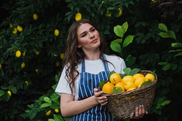 줄무늬 파란색 앞치마를 입은 정원사가 레몬 바구니를 들고 정원에 서 있다