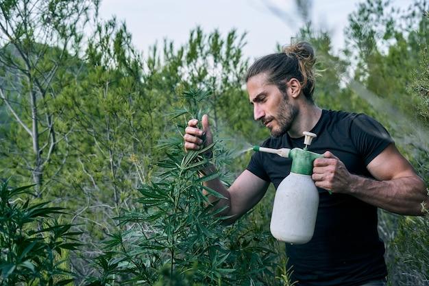 施肥しながら緑豊かな庭の世話をしている庭師