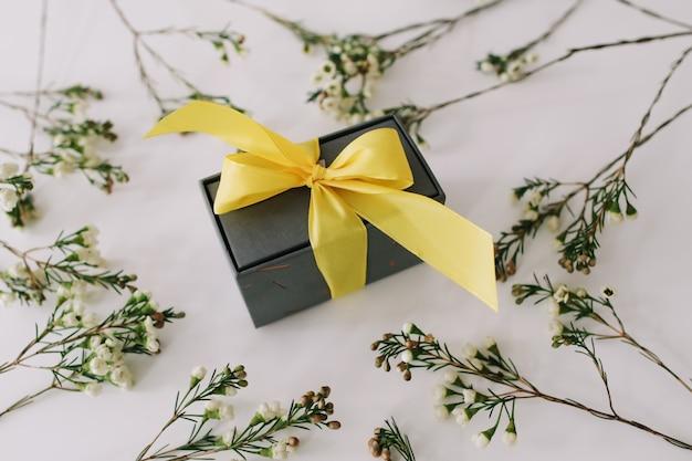 Подарочная коробка в обрамлении ветвей и листьев на белом фоне