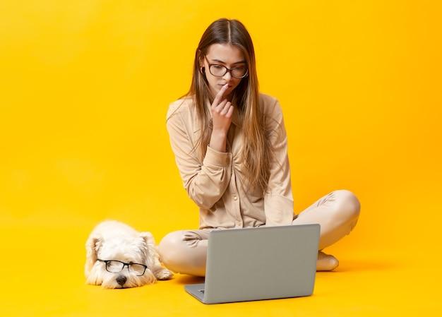 여자 강아지와 함께 노란색 배경에 노트북에서 작동 합니다. 강아지 노란색 배경에 노트북에서 작동 합니다. 고품질 사진